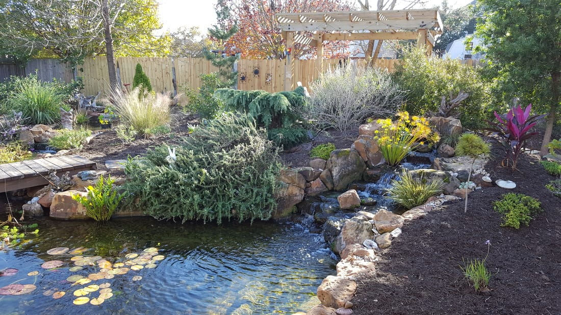 Backyard Ecosystem Fish and Koi Ponds in Austin and Central Texas