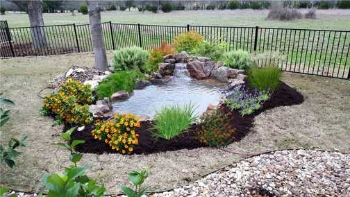 Entry-level 8x10 backyard fish pond in Austin, Central Texas
