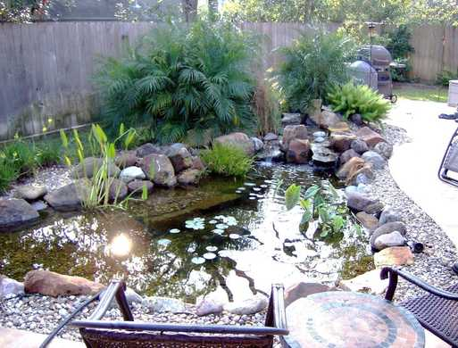 Backyard Ecosystem Fish and Koi Pond for your Austin Texas Landscape