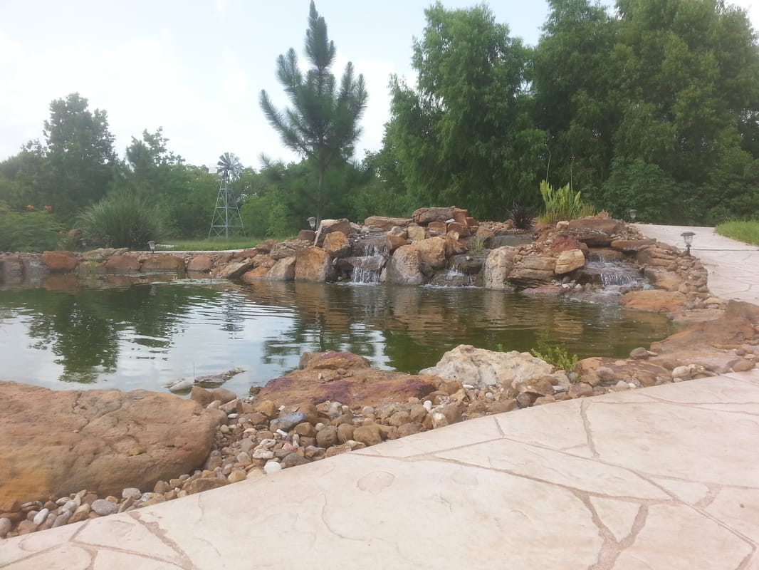 Large Backyard Ponds are Perfect for Koi and other Fish in Austin and Central Texas