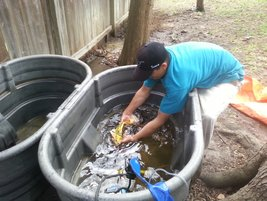Pond Cleaning and Maintenance in Austin and Central TexasPicture