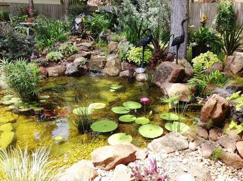 Beautiful Backyard Paradise Features a 15x15 Pond and Constructed Wetlands Filter